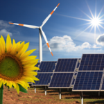 Renewable energy or Green Power: What is it, its types and sources